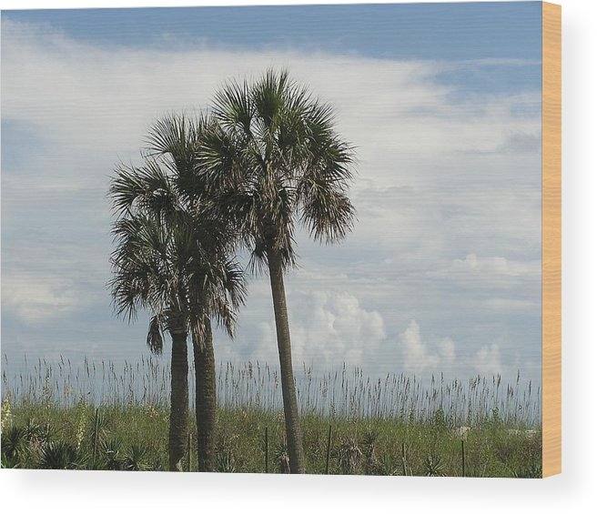 Beach Wood Print featuring the photograph Beach Side Serenity by Diane Frick