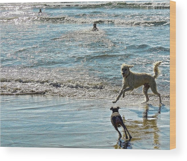 Dogs Wood Print featuring the photograph Blue And Silver by Brian D Meredith