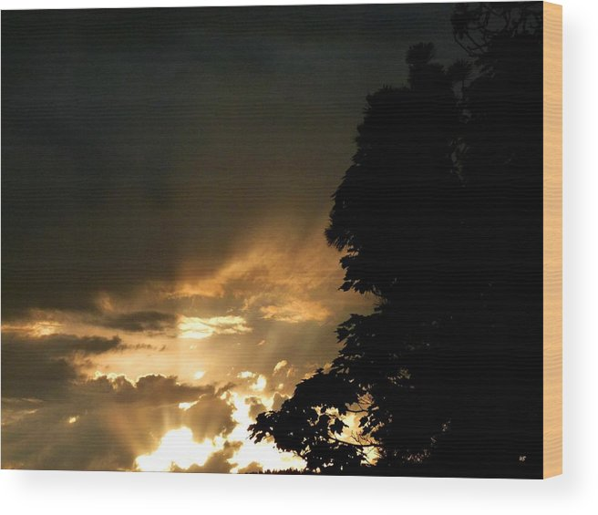Brilliant Wood Print featuring the photograph Brilliant Rays by Will Borden