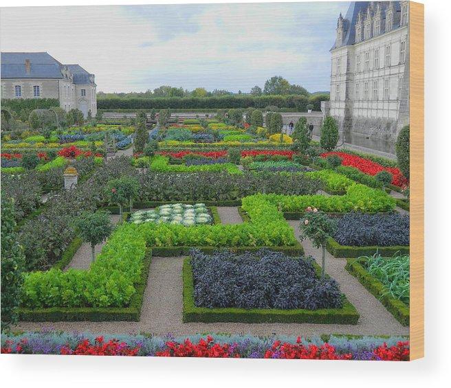 Landscape Wood Print featuring the photograph Castle Gardens by Jerry Killian