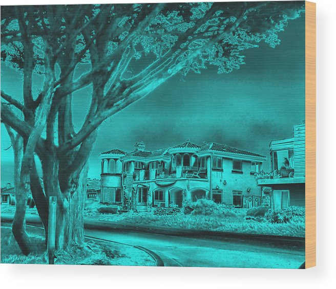 Architecture Wood Print featuring the photograph Coastal Architecture Two by Joyce Dickens