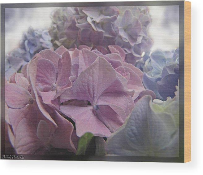 Nature Wood Print featuring the photograph Dream Hydrangeas by Debbie Portwood