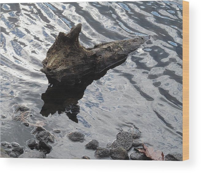 Nature Wood Print featuring the photograph Drifting by Loretta Pokorny