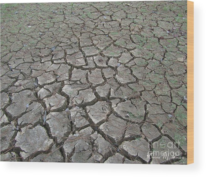 Mud Wood Print featuring the photograph Drought by Donna Brown