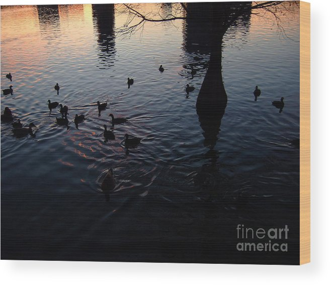 Lake Wood Print featuring the photograph Dusk With Ducks by Leanna Rosato
