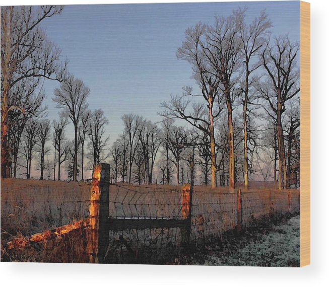 Trees Wood Print featuring the photograph Early Morning by Jerry Hellinga
