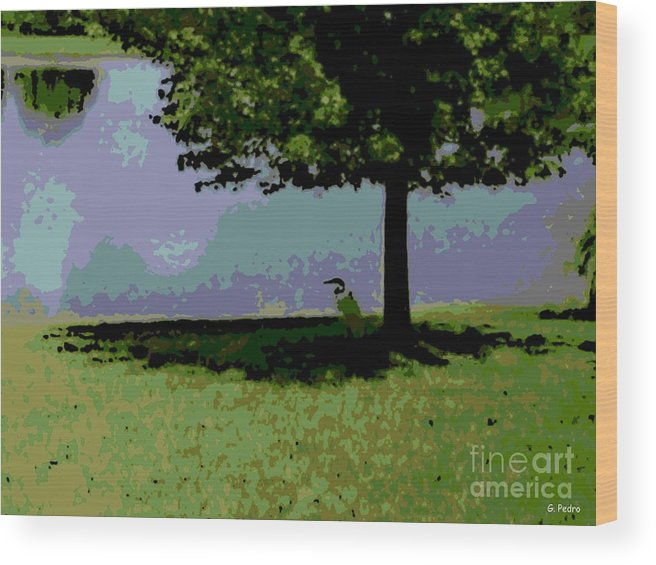 Bird Wood Print featuring the photograph In The Shade by George Pedro