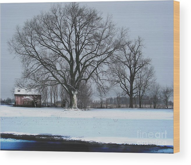 Tree Wood Print featuring the photograph Indiana Winter by Jerry Hellinga