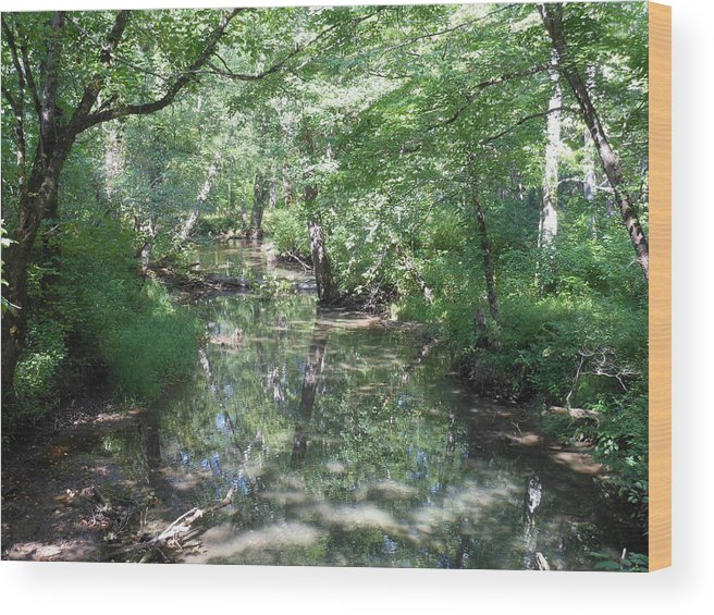 Cades Cove Wood Print featuring the photograph Little Creek Reflections by Linda Labadorf