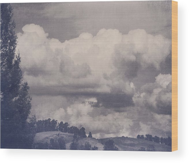Landscapes Wood Print featuring the photograph Overwhelmed by Laurie Search