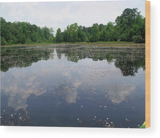 Lake Wood Print featuring the photograph Peace And Quiet by Emeraldcoast Gallery