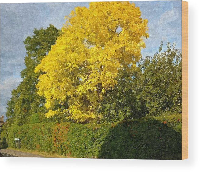 Oil Painting Wood Print featuring the painting Perfect Summers Day by Ronald Osborne