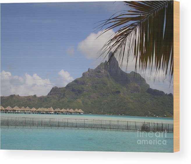Private Island Lookout Bora Bora Wood Print featuring the photograph Private Island Lookout by Paul Jessop