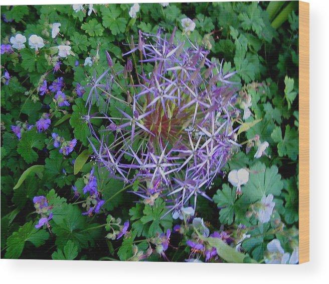 Landscapes Wood Print featuring the photograph Purple Flower Sphere by April Patterson