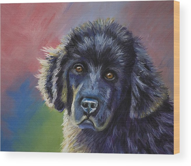 Newfoundland Wood Print featuring the drawing Rainbows And Sunshine - Newfoundland Puppy by Michelle Wrighton