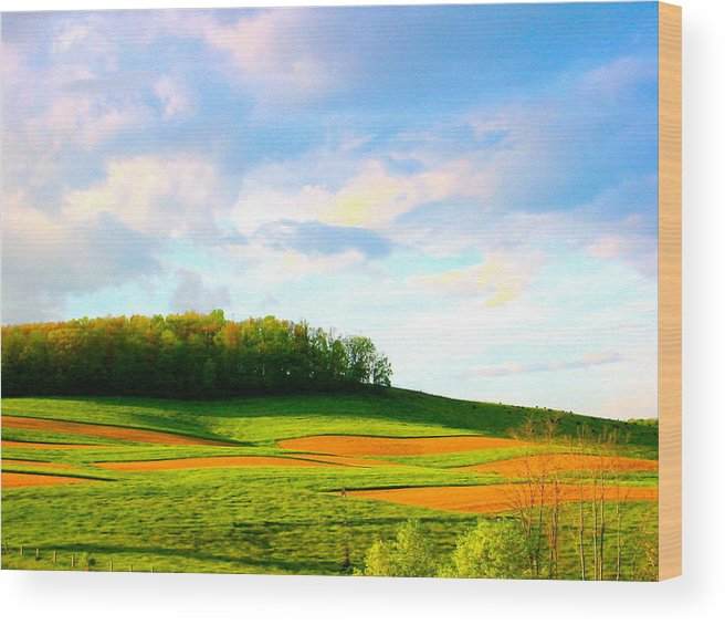 Landscape Photo Wood Print featuring the photograph Red Till by Sarah Gayle Carter