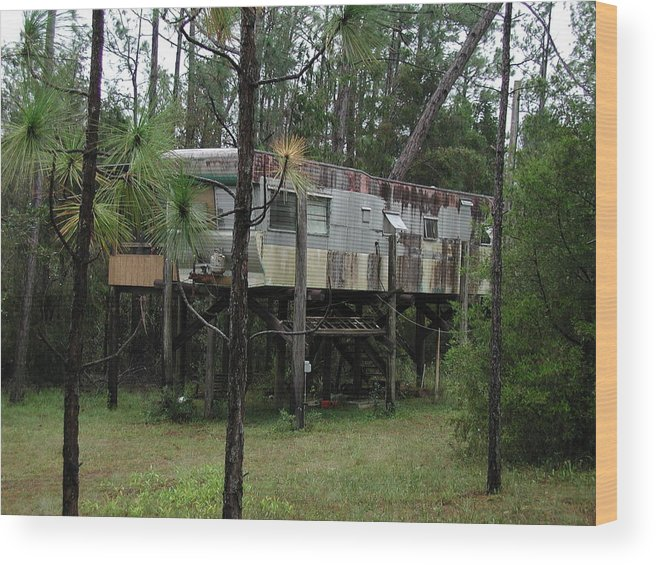 Condos Wood Print featuring the photograph Redneck Condo by Neil Kelleher