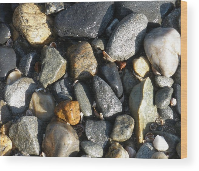 Nature Wood Print featuring the photograph Rocks by Tracy Fusco