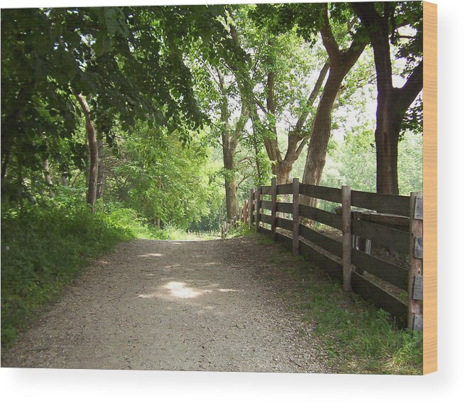 Country Wood Print featuring the photograph Shady Way by Elizabeth MacKinney