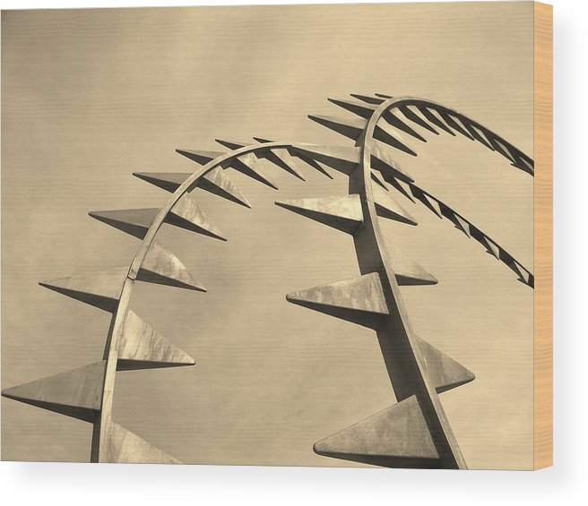 Mod Wood Print featuring the photograph Spike by Shawn Savage