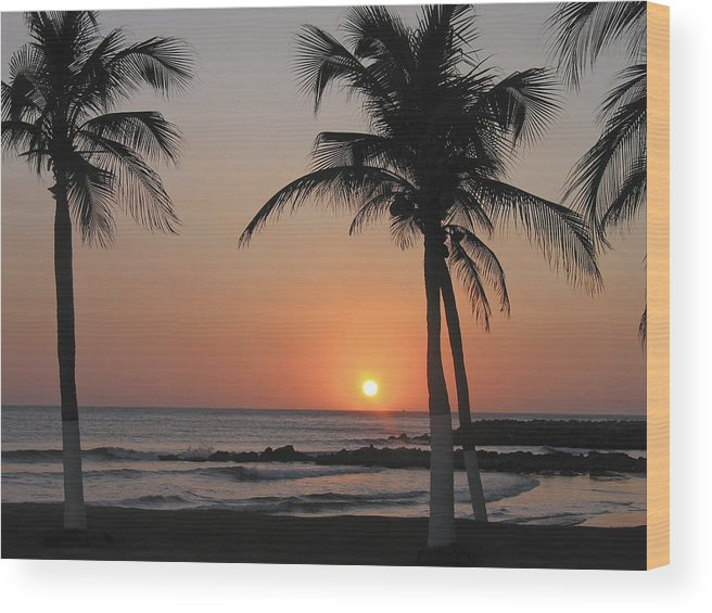 Columbia Wood Print featuring the photograph Sunset by David Gleeson