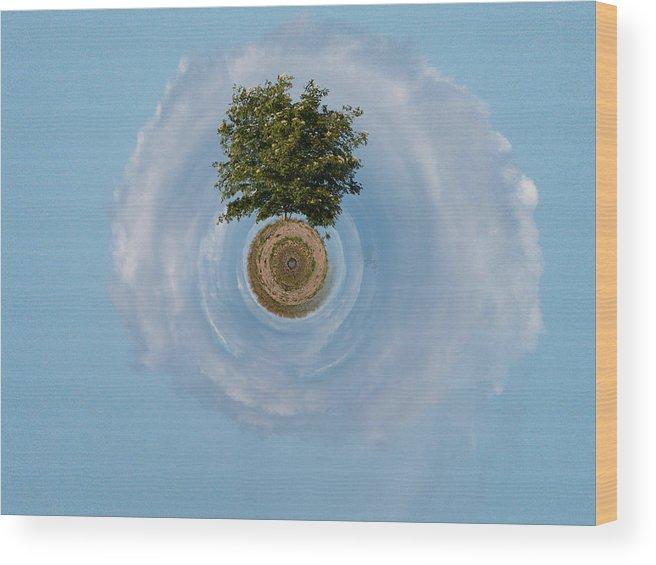 Gulf Of Bothnia Wood Print featuring the photograph The Tree Of Life by Jouko Lehto