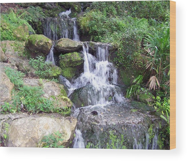 Landscape Wood Print featuring the photograph The Waters Shall Spring Forth From The Ground Vi by Cheryl Matthew