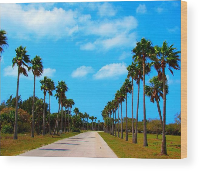 Palm Tree Wood Print featuring the photograph Welcome To Florida by Laura Holt