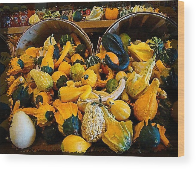 Gourds Wood Print featuring the photograph Winter Gourds by Nick Kloepping
