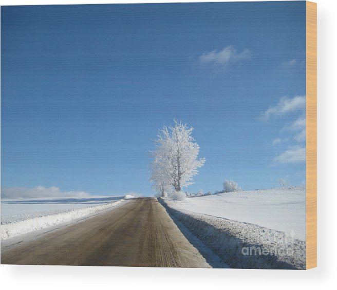 Ice Wood Print featuring the photograph Winter Wonderland Series 5 by Wendy Butcher