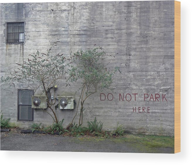 Urban Wood Print featuring the photograph Writing On The Wall by Pamela Patch