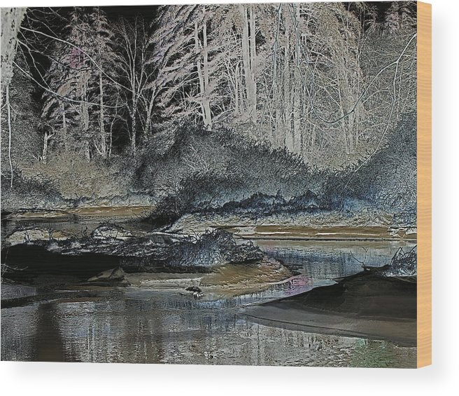 Digital Wood Print featuring the photograph Iced View by Peter Gray
