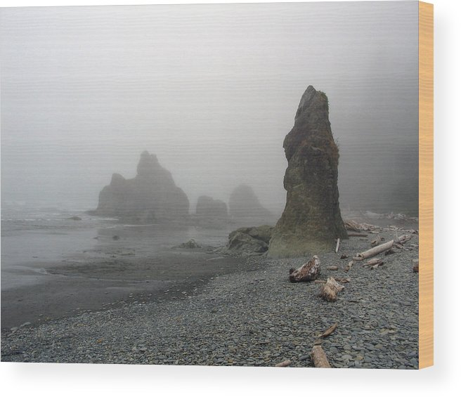Landscape Wood Print featuring the photograph Pillar In Fog by Ty Nichols