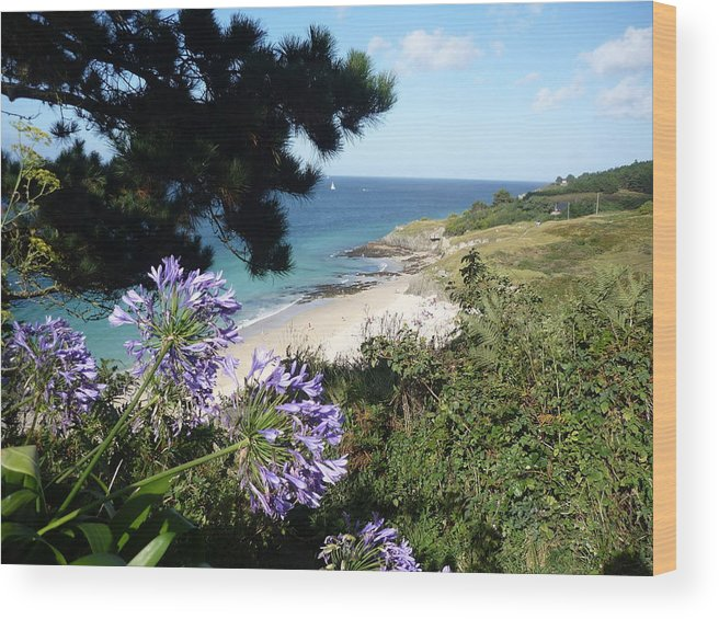 Coast Brittany Flowers Sea Ocean Bay Pines France Wood Print featuring the photograph Bel-ile-en-mer by Lizzy Forrester