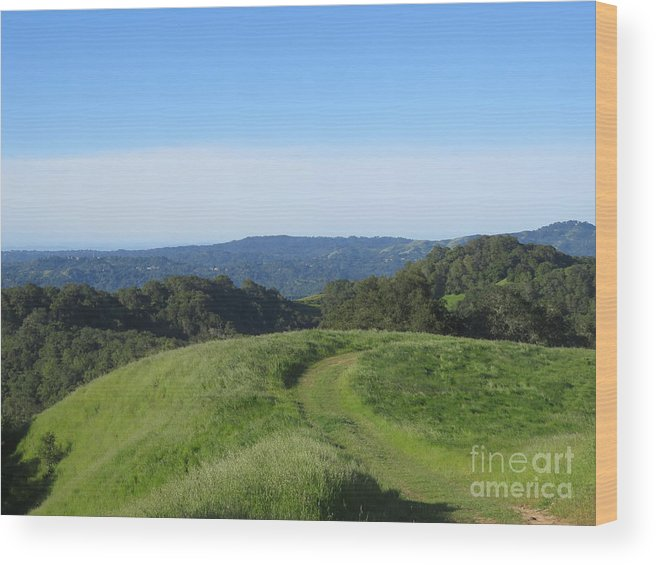Landscape Wood Print featuring the photograph Bend In The Trail by Suzanne Leonard
