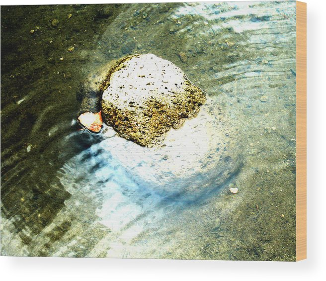 Rocks Wood Print featuring the painting Beside Still Waters by Tim Tanis