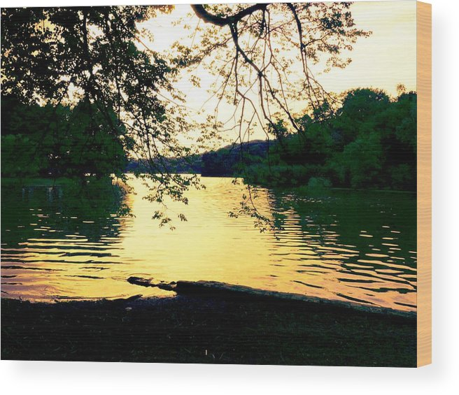 Landscape Wood Print featuring the photograph Golden Days by Kendall Eutemey