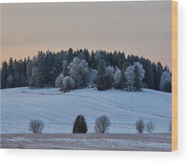Finland Wood Print featuring the photograph Mihari by Jouko Lehto
