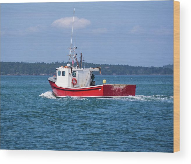 Lubec Wood Print featuring the photograph Lubec, Maine by Trace Kittrell