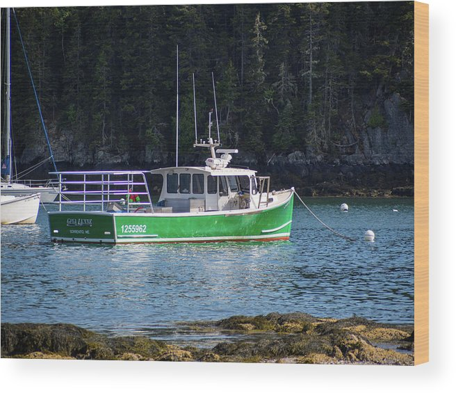 Maine Wood Print featuring the photograph Down East Maine by Trace Kittrell
