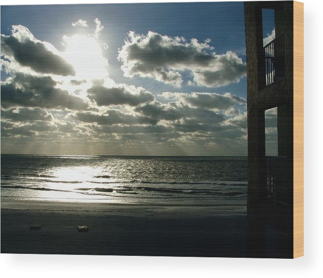 Landscape Photography Wood Print featuring the photograph Florida by Rika Maja Duevel