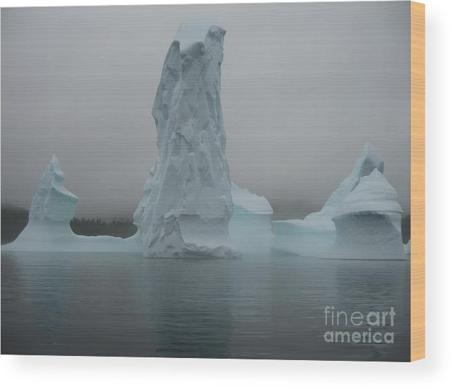 Icebergs Newfoundland Wood Print featuring the photograph Icebergs by Seon-Jeong Kim
