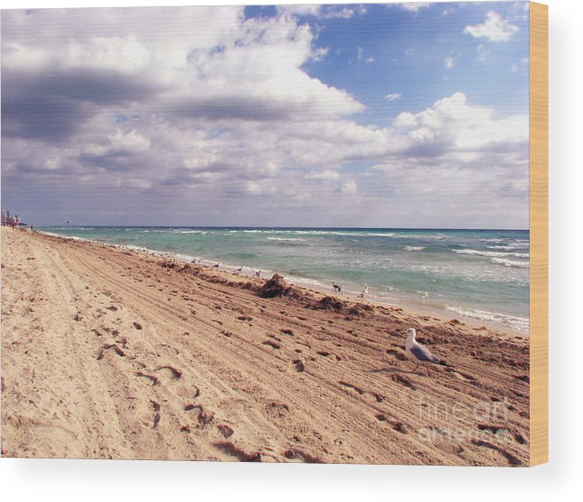 Beaches Wood Print featuring the photograph Miami Beach by Amanda Barcon