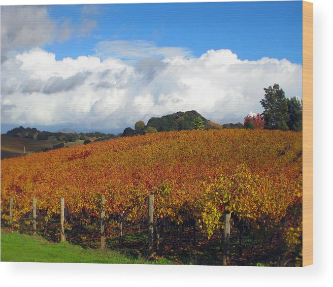 Napa Wood Print featuring the photograph Untitled by Kim Pascu