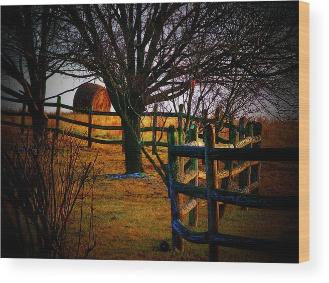 Hayroll Wood Print featuring the photograph Winding Fence by Joyce Kimble Smith