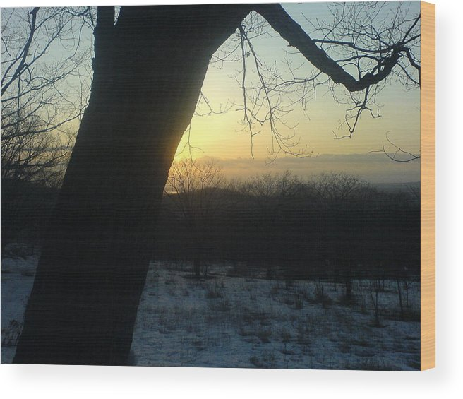 Nature Wood Print featuring the photograph 20090322 36 In Shadow Of Tree Before Sunset by Ripe Vinkle