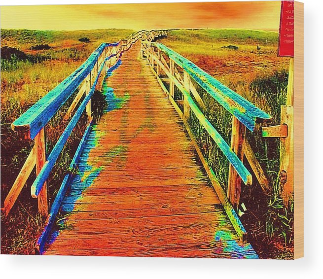 Endless Landscape Wood Print featuring the painting 2355z Wooden Walkway by Ed Immar