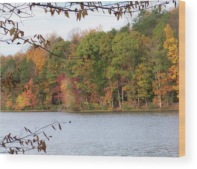 Lake Wood Print featuring the photograph 3008-fall Waterscape by Martha Abell