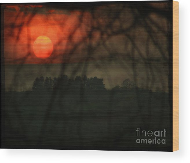 Sunset Wood Print featuring the photograph The Sunset by Angel Ciesniarska