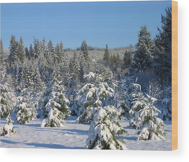 Wood Print featuring the digital art A Light Snow Dusting by Barb Morton